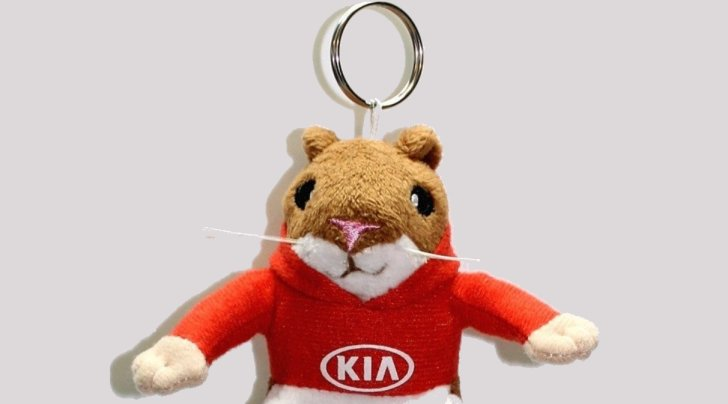 5 Best Designs Of Kia Soul Key Chains (Updated In 2021)